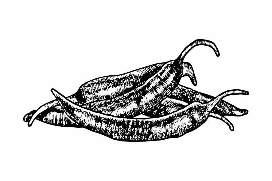 Gewürze - Chili