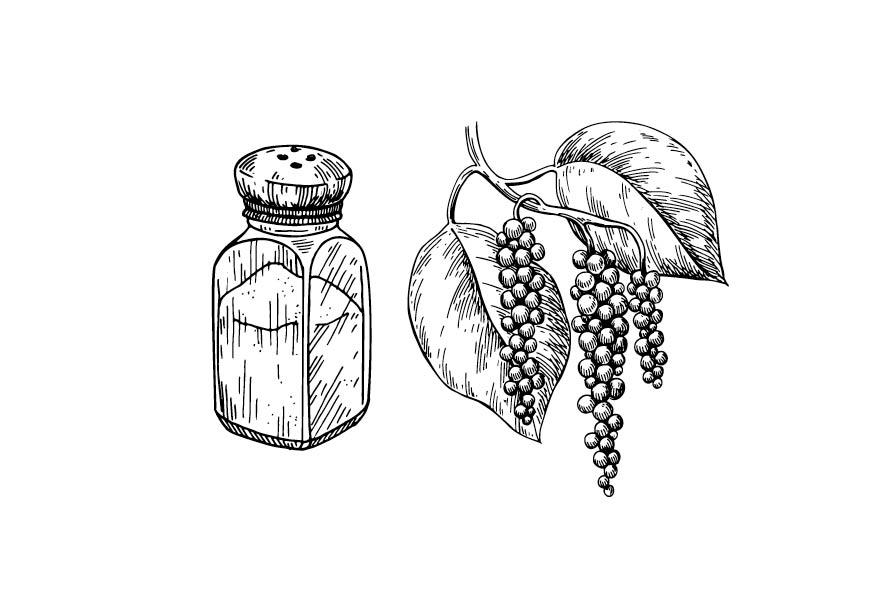 Gewürze - Salz und Pfeffer